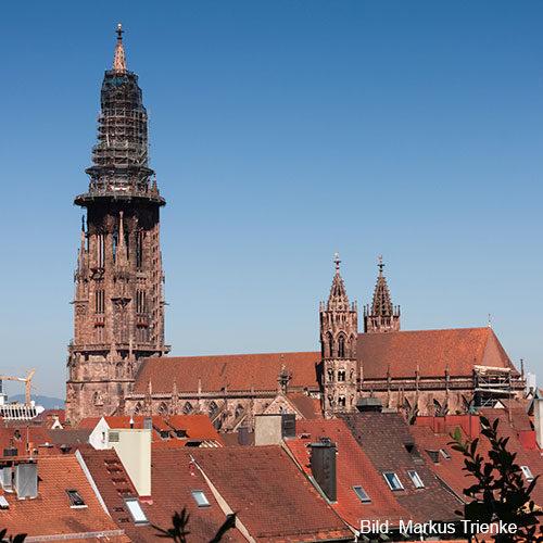 Freiburger Münster Sanierung